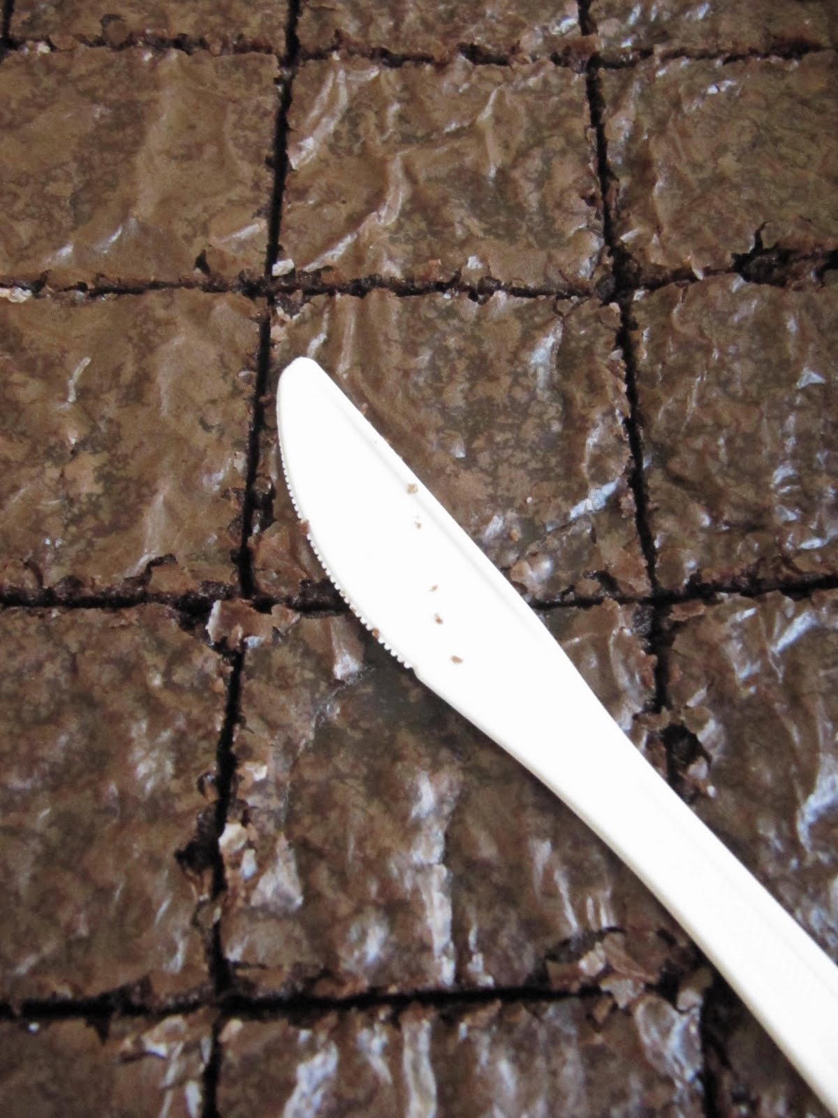 recipe: perfect brownie pan recipe book [15]