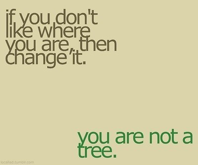 if you don't like where you are, then change it. you are not a tree