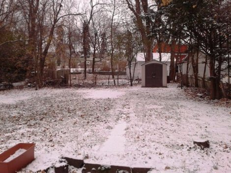Snow in the backyard